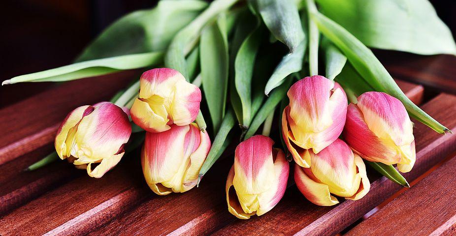 عکس دسته گل لاله زیبا