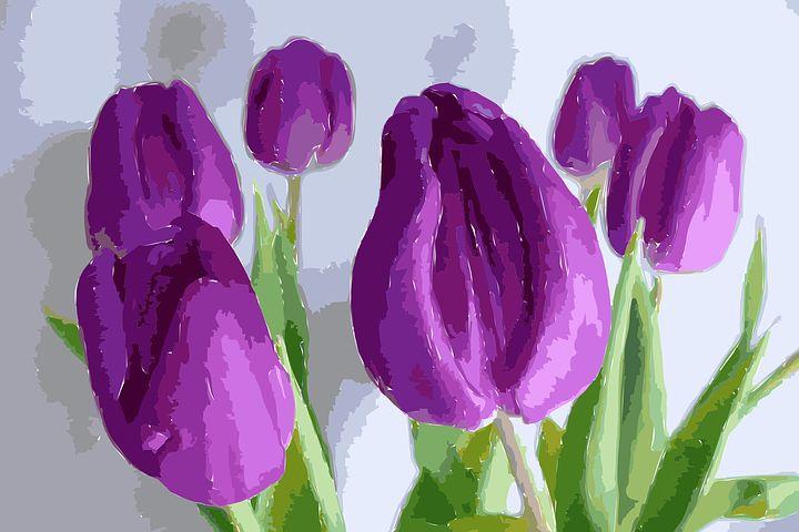 عکس نقاشی گل لاله
