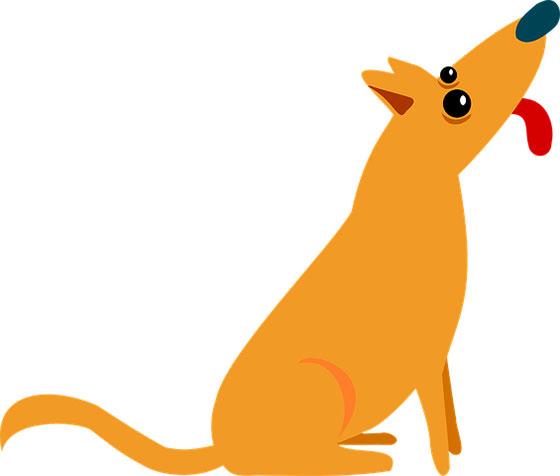عکس کارتونی حیوانات خانگی : سگ زیبا