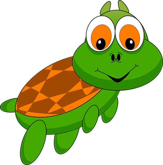 عکس حیوانات : لاکپشت کارتونی و فانتزی