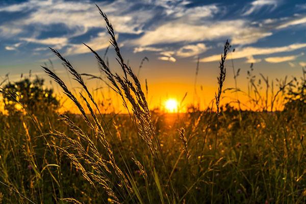 عکس غروب خورشید در طبیعت