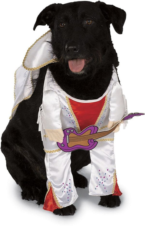 خرید لباس های سگ