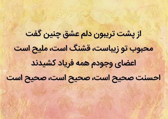 اشعار عاشقانه زیبا از شاعران بزرگ