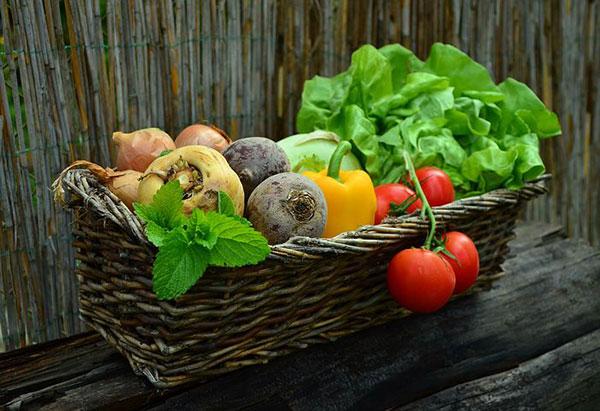 سبزیجات غنی از ویتامین E