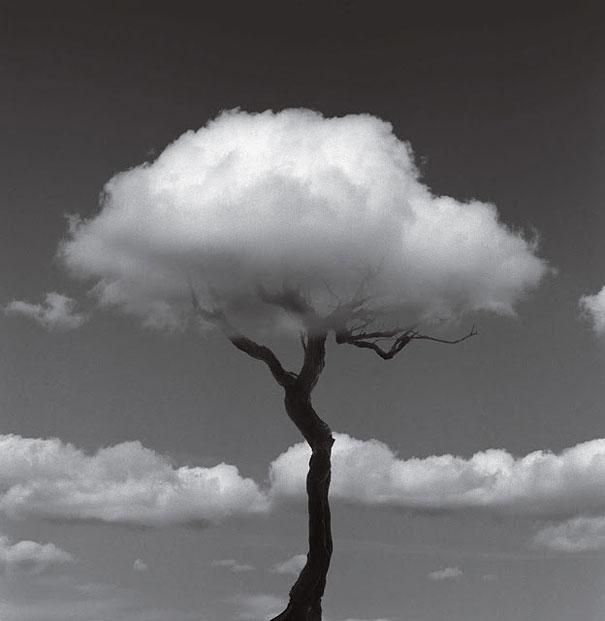 عکس های سیاه و سفید زیبا