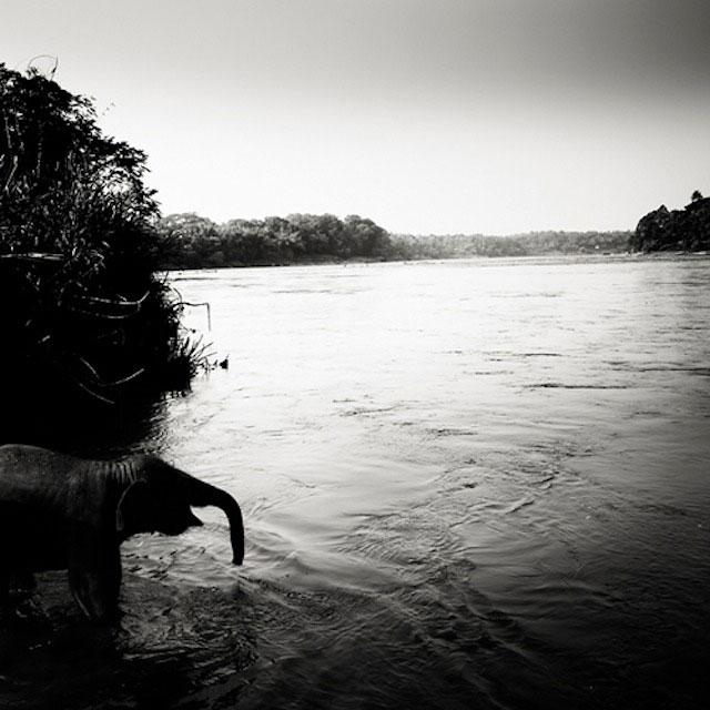عکس های سیاه و سفید کشور هند