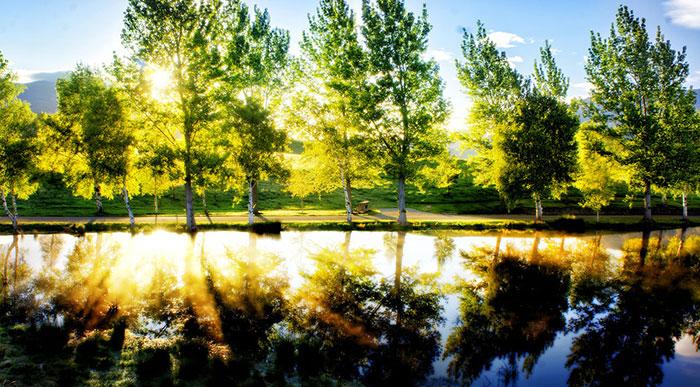 beautiful-relax-nature-photos-4-3.jpg (700×387)
