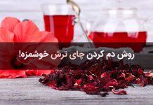 طرز تهیه دمنوش چای ترش و طریقه مصرف آن