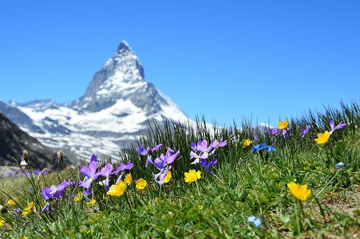 تصاویر طبیعت زیبای سوییس