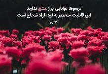 جملات عاشقانه دلنشین و زیبا از بزرگان