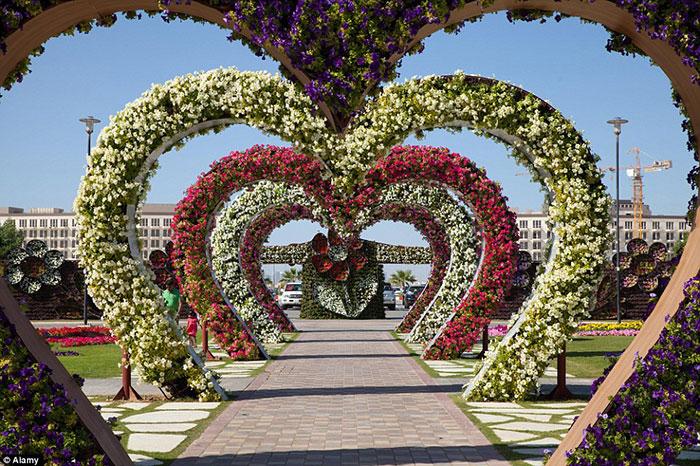 این جاذبه توریستی اعجاب انگیز، رکورد گینس را با عنوان بزرگترین باغ گل دنیا به خود اختصاص داده است. تپه گل هایی به شکل قلب نیز که محبوب کوچه دل هاست، جذابیت آن را دو چندان می کند.