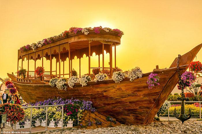 باغ Dubai Miracle Garden، مجموعه هیجان انگیزی از 45 گونه گیاهی مختلف در زمینی به مساحت 18 هکتار است؛ تپه گل و طاق گل هایی شبیه قلب و قلعه هایی مزین با گل