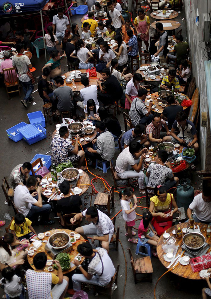 جشنواره گوشت سگ یولین در چین