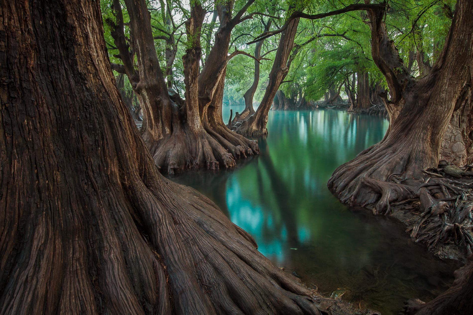 عکس طبیعت مکزیک