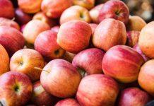 ارزش غذایی کالری قند سیب درختی