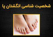 شخصیت شناسی از روی مدل انگشتان پا