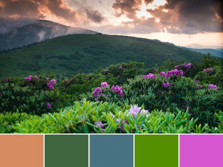 پارک ملی کوه های دودی