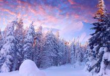 عکس پروفایل طبیعت زمستانی برفی