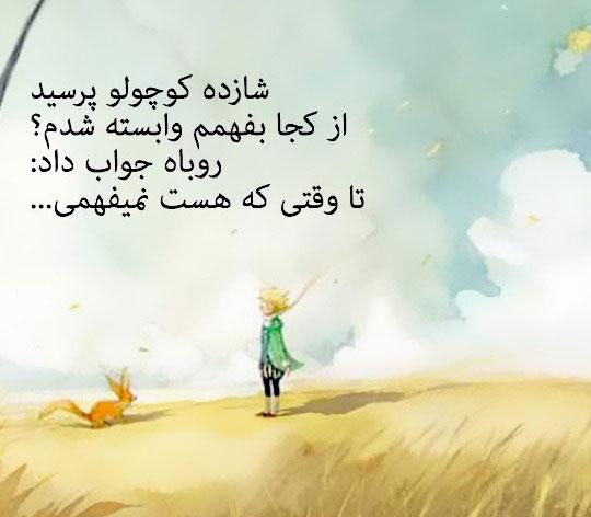 عکس نوشته های شازده کوچولو و روباه