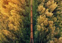 خروش قطار ها در میان طبیعت زیبا و حیرت انگیز آمریکا