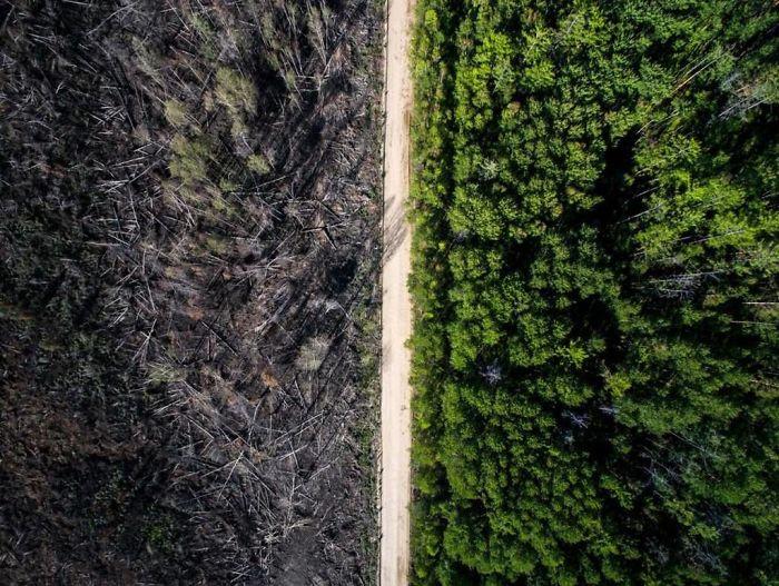 جاده ای که جلوی آتش را گرفته است