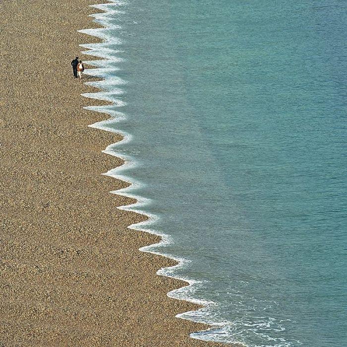 دندان های تیز دریا