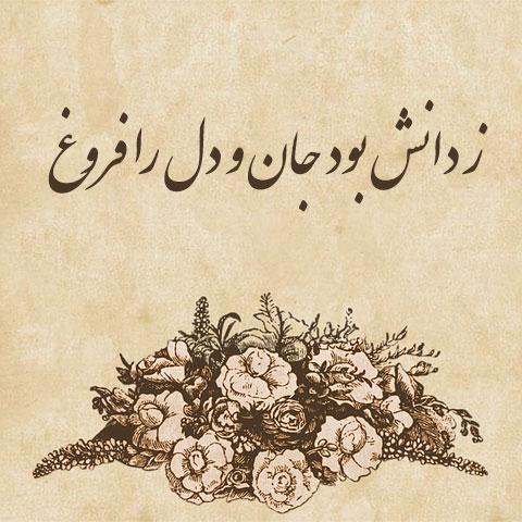شعر زیبای فردوسی در مورد علم و دانش