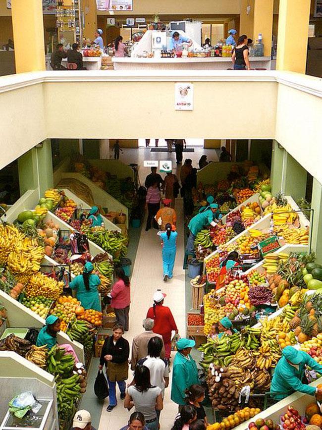 دکوراسیون مغازه میوه فروشی یزرگ