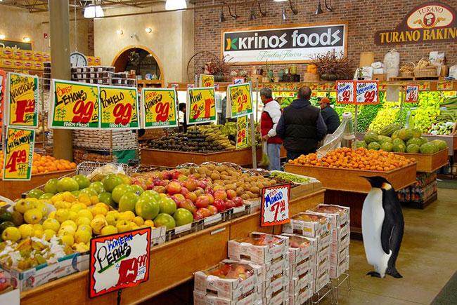 دکوراسیون فروشگاه و سوپرمارکت میوه فروشی
