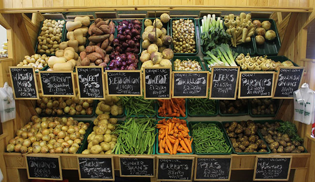 دکوراسیون میوه فروشی