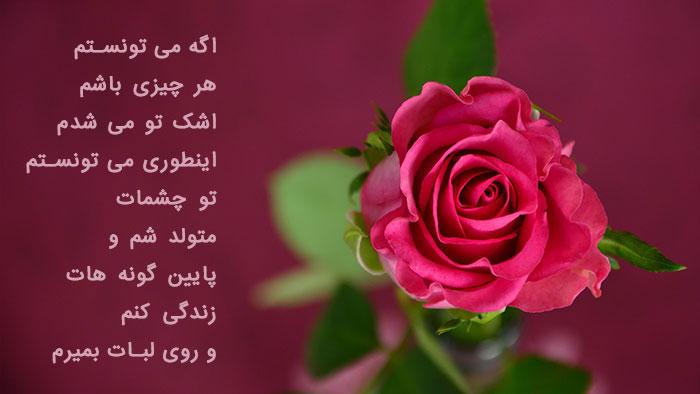 عکس پروفایل گل , تصاویر گل رز عاشقانه