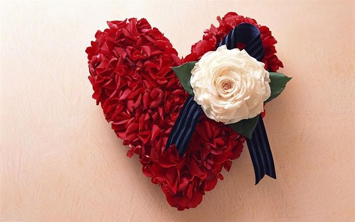 عکس پروفایل گل و قلب , عکس گل های رومانتیک