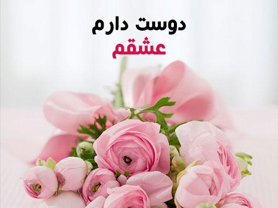 عکس گل رز صورتی با متن عاشقانه و رمانتیک دوست دارم عشقم