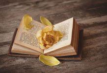 عکس پروفایل کتاب باز با گل