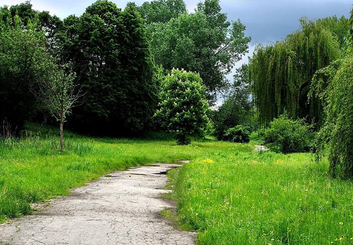 منظره های طبیعی لهستان