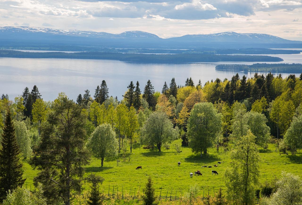 طبیعت بهاری سوئد