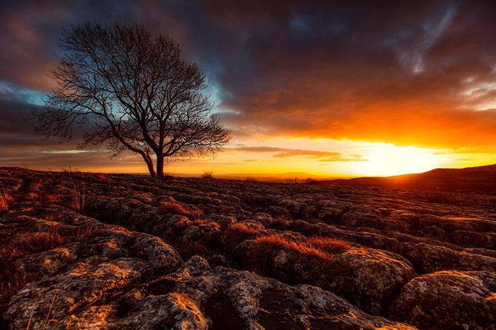 عکس ضد نور طبیعت