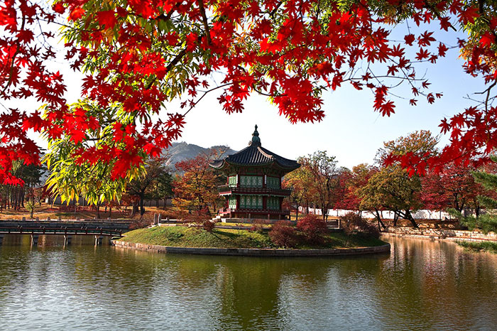 قصر زیبا و تاریخی