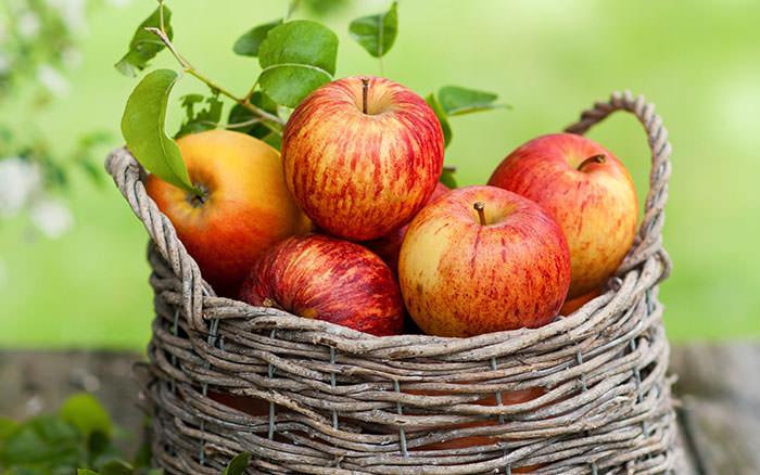 خواص سیب درختی