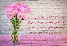 عکس پروفایل شعرهای عاشقانه حافظ