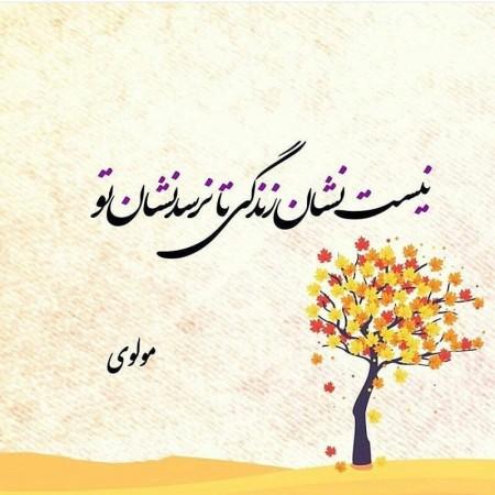 شعر عاشقانه مولانا در مورد دلتنگی و تنهایی