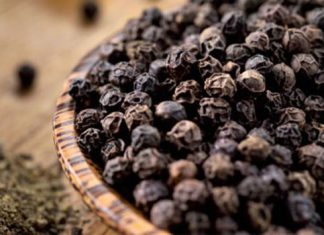 فواید دانه و پودر فلفل سیاه