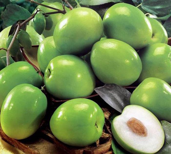 خواص میوه کنار سبز