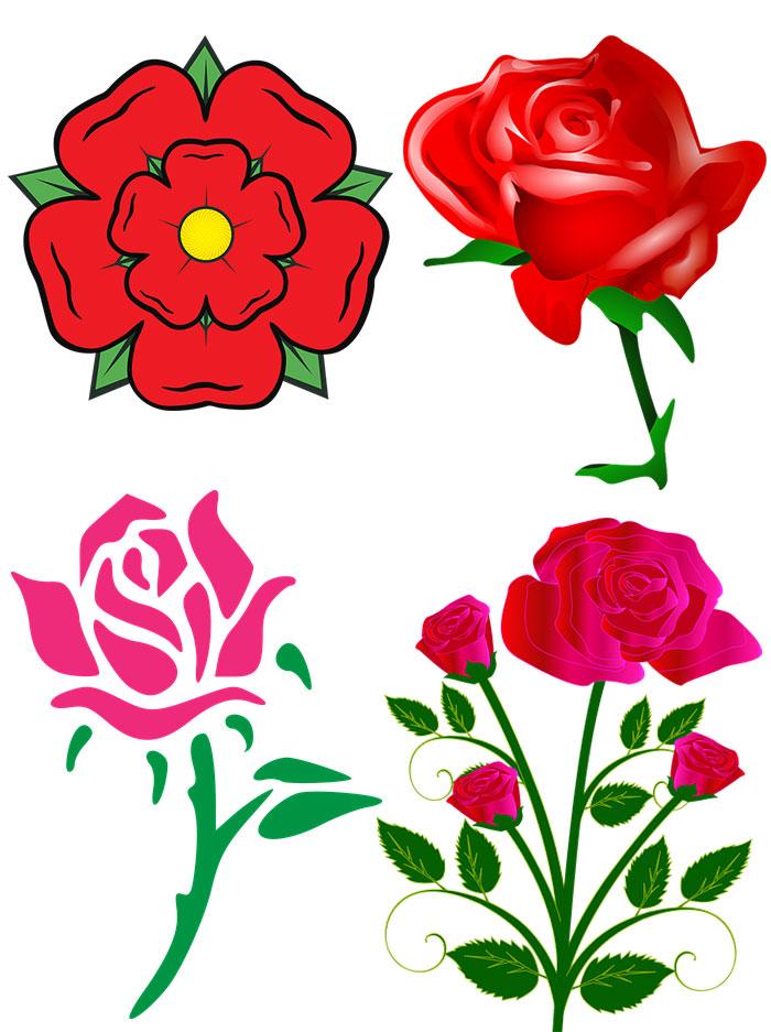 دانلود وکتور گل رز