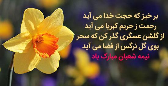 دانلود عکس زیبا با گل نرگس برای تبریک نیمه شعبان