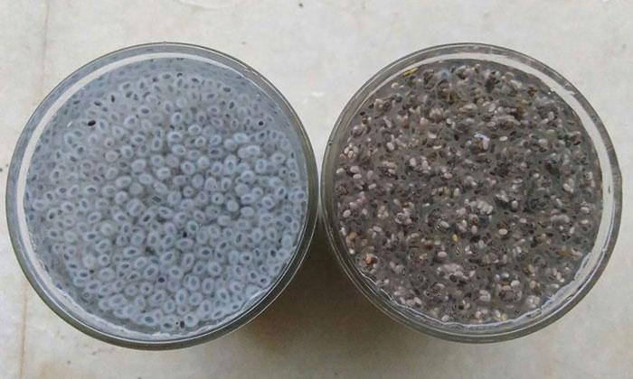سمت راست : شربت دانه چیا - سمت چپ - شربت تخم شربتی