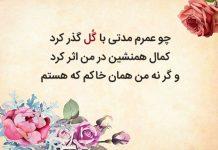 معنی و متن کامل شعر گل و گل از شاعر معاصر ایرانی ملک الشعرای بهار