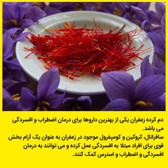 عکس رنگی انواع گیاهان دارویی