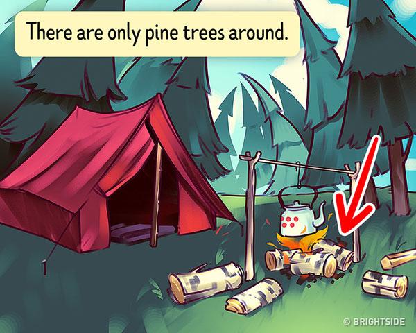 جواب تست اردوگاه در جنگل