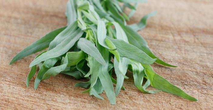 خواص سبزی ترخون خشک و تازه